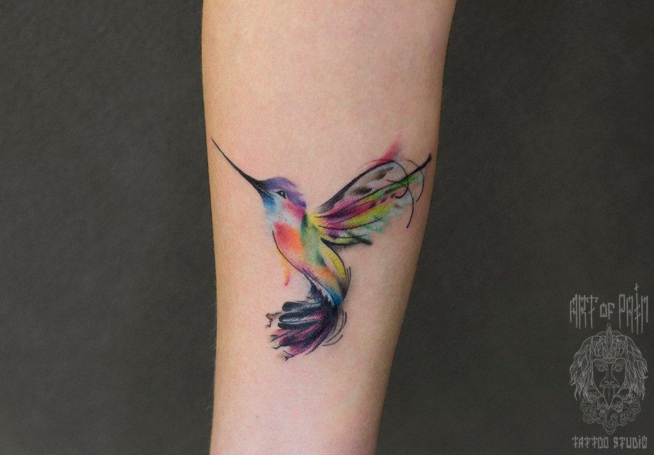 Колибри, птица. Самая 88