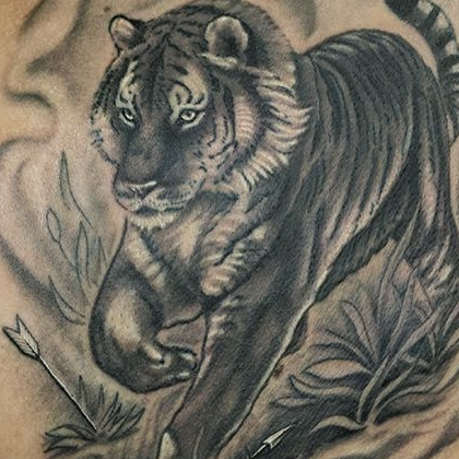 Татуировка мужская реализм на лопатке тигр
