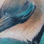 Татуировка женская акварель на лопатке птица