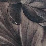 Татуировка женская Black&Grey на предплечье цветы