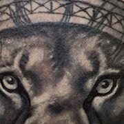 Татуировка мужская Black&Grey на икре лев