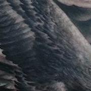 Татуировка мужская Black&Grey на груди орел