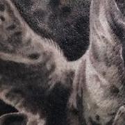 Татуировка женская Black&Grey на лопатке пегас