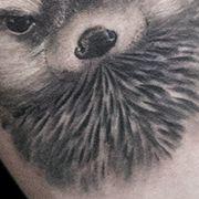 Татуировка женская Black&Grey на предплечье животные