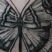 Татуировка женская графика на руке бабочка