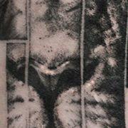 Татуировка мужская графика на предплечье лев