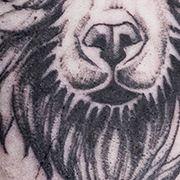 Татуировка мужская графика на предплечье медведь