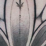 Татуировка женская графика на спине орнамент