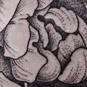 Татуировка женская графика на бедре роза