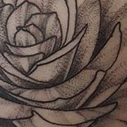 Татуировка женская графика на плече роза