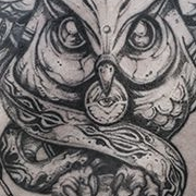 Татуировка мужская графика на груди сова