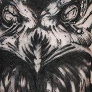 Татуировка женская графика на предплечье сова