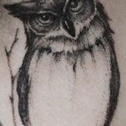 Татуировка женская графика на шее сова