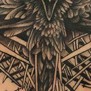 Татуировка мужская хорор на спине ворон