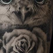 Татуировка женская реализм на предплечье сова