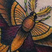 Татуировка женская олд скул на лопатке бабочка