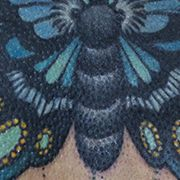 Татуировка женская олд скул на спине бабочка