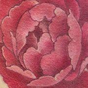 Татуировка женская реализм на ребрах цветы