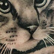 Татуировка женская реализм на предплечье кот