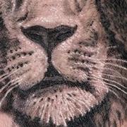 Татуировка мужская реализм на кисти лев