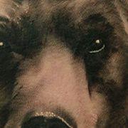 Татуировка мужская реализм на предплечье медведь