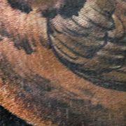 Татуировка женская реализм на плече птицы