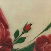 Татуировка женская реализм на животе роза