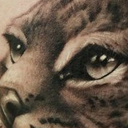 Татуировка женская реализм на предплечье рысь
