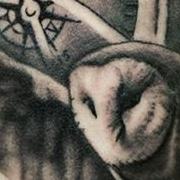 Татуировка женская реализм на бедре сова