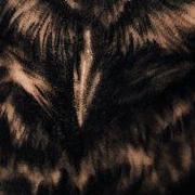 Татуировка мужская реализм на предплечье сова