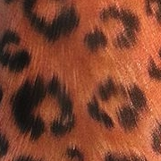Татуировка женская реализм на ноге животные