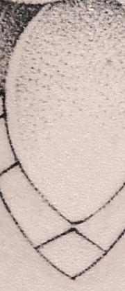 Татуировка мужская графика на предплечье цветы