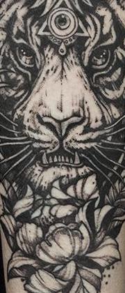Татуировка мужская графика на предплечье тигр