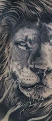 Татуировка женская реализм на лопатке лев