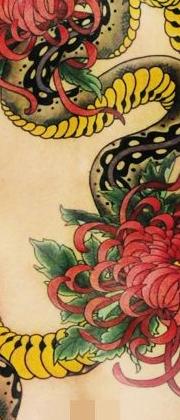 Татуировка женская япония на спине змея