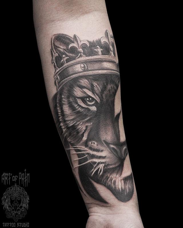 Татуировка мужская black&grey на предплечье тигр в короне – Мастер тату: Юрий Хандрыкин