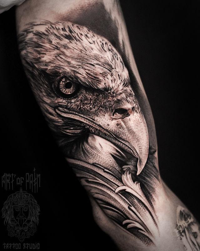 Татуировка мужская реализм на плече орел – Мастер тату: Слава Tech Lunatic