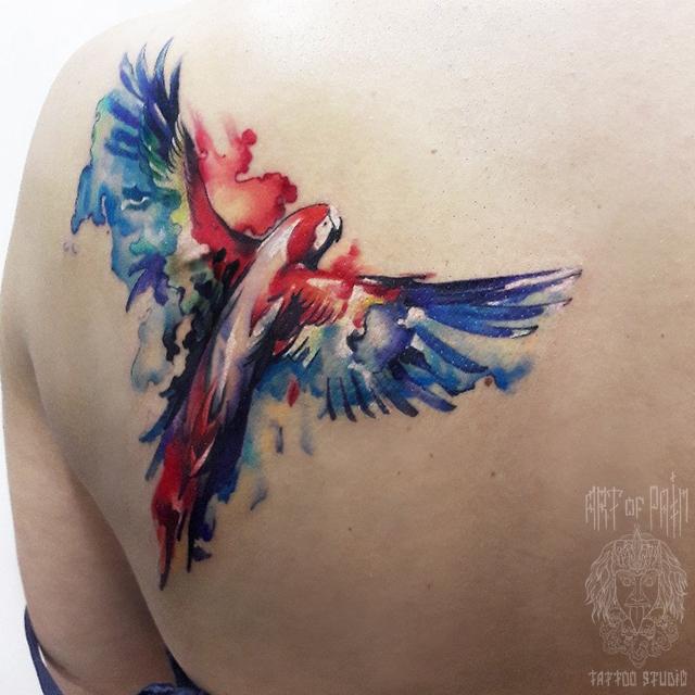 татуировка женская акварель на лопатке попугай – Мастер тату: Анастасия Крохотная